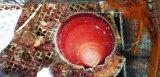 《近海産甲殻類》ツキヒガイ(月日貝)…ハンドコート採取